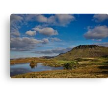 Cregennan lake and Cader Idris Canvas Print