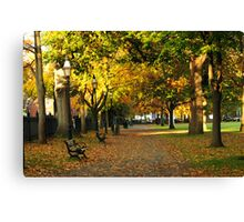 Autumn in Salem Commons Canvas Print