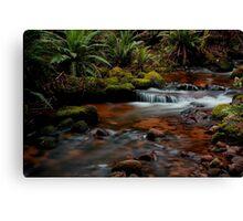 Cuckoo Falls, small cascades 2 Canvas Print