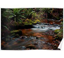 Cuckoo Falls, small cascades 2 Poster