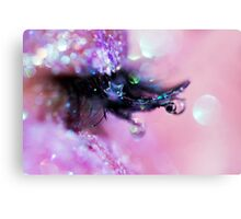 Lash Accessories Canvas Print