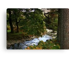 wasdale stream Canvas Print