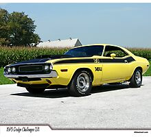 1970 Dodge Challenger T/A Photographic Print
