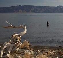 Fishing for Cutthroat Trout, Pyramid Lake, NV by David Galson