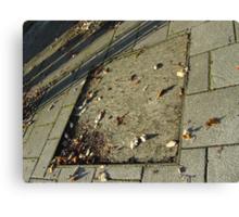 autumn quadrilateral (pavement in Fall, Burntisland) Canvas Print