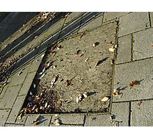 autumn quadrilateral (pavement in Fall, Burntisland) Photographic Print