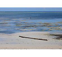Low tide, Shelley beach, Mombasa  Photographic Print