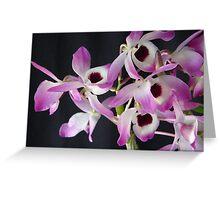 Dendrobium (Den.) Nobile Greeting Card