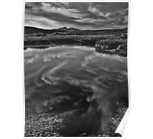 Reflections in a bog pool Poster