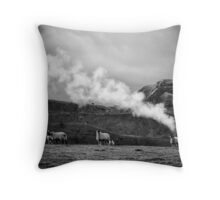 Climate change source found Throw Pillow
