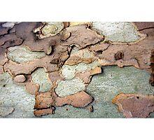 Spanish Bark 2 Photographic Print