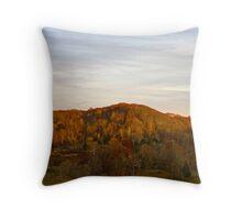 Late Autumn, Late Day Throw Pillow