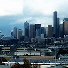 Overlooking Seattle by Stephanie Exendine