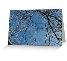 The Beauty of the Storm Greeting Card