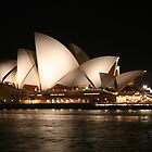 Sydney Opera House By Night  by Amanda  Stewart