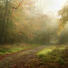 Follow your path of destiny by Graham Ettridge