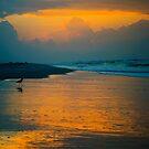 Dawn by Phillip M. Burrow