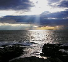 Narragansett Bay at Beaver Tail by Rosemary Carter-Molnar