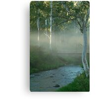 Dusty Trail,Sheepyard Flat, Victorian High Country Canvas Print