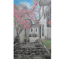 Greece in Bloom Photographic Print