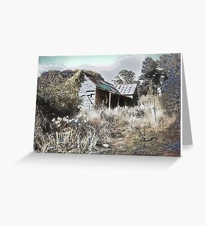 Old house reclaimed by nature Greeting Card