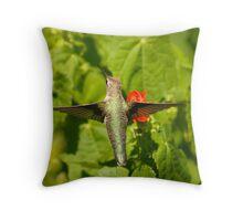 Wingspan Throw Pillow