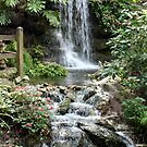 Waterfall at the Park by AuntDot