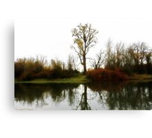 Nations Largest CottonWood Tree Canvas Print