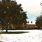 Winter - Styal, Cheshire 2 by John Brotheridge