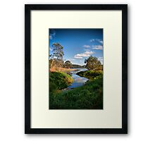 I Choose Framed Print