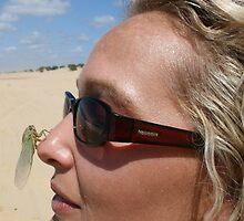 The Resting Cicada  by Amanda  Stewart