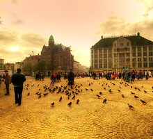 Amsterdam by Svetlana Sewell