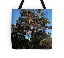 eucalypt sunset Tote Bag