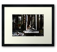 Life After People Framed Print
