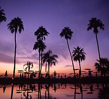 Sunset at the Luxor Sheraton, Egypt, October 2007 by Michael Sissons
