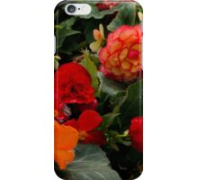 Begonia garden iPhone Case/Skin