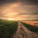 Australian Farmland by Steven  Sandner