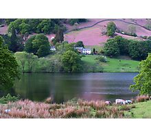 Rydal Water 2 Photographic Print