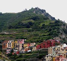 Colouful terraces by su2anne