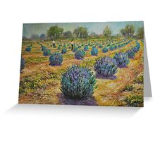 Study for Lavender Farm Greeting Card