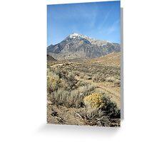 """""""Mount Tom"""" Greeting Card"""