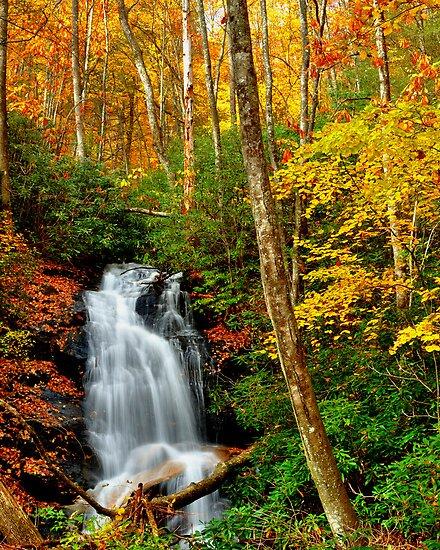 Beauty in Flow by Miles Moody
