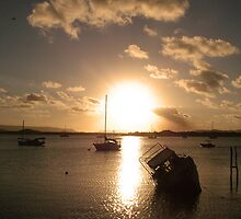 View across the bay, Cooktown by Alex Bonner