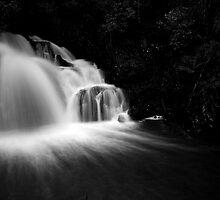 L/Dale Falls b&w by Husky