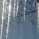 AMAGANSETT ICICLES by Renee Dahl