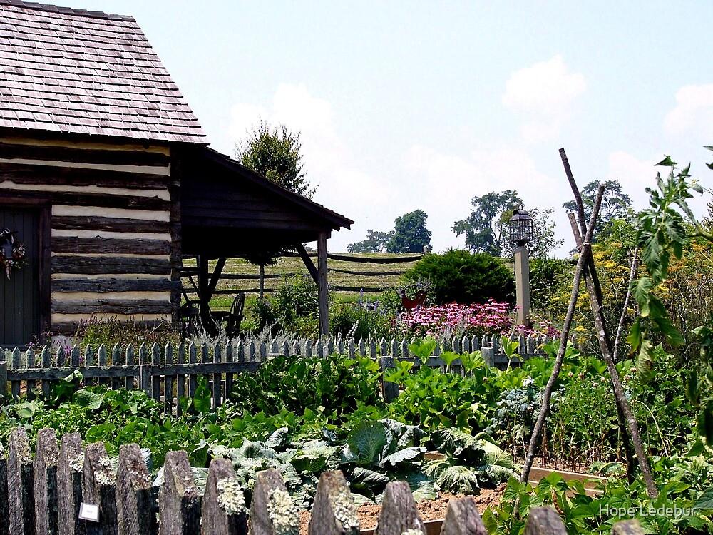 Buffalo Springs Herb Farm_Kitchen Garden by Hope Ledebur