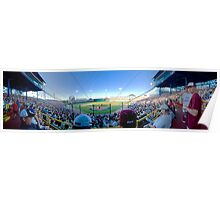 The College World Series! Poster