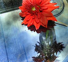 Dahlia and Glass Vase by DeerPhotoArts