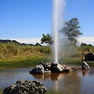 Old Faithful Geyser, Calistoga, California by Susan Leonard