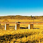 Rail bridge over the Molongolo River by Geoffrey Thomas